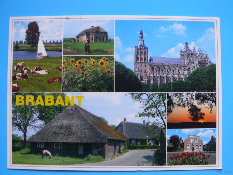 Открытка в белоруссию 70